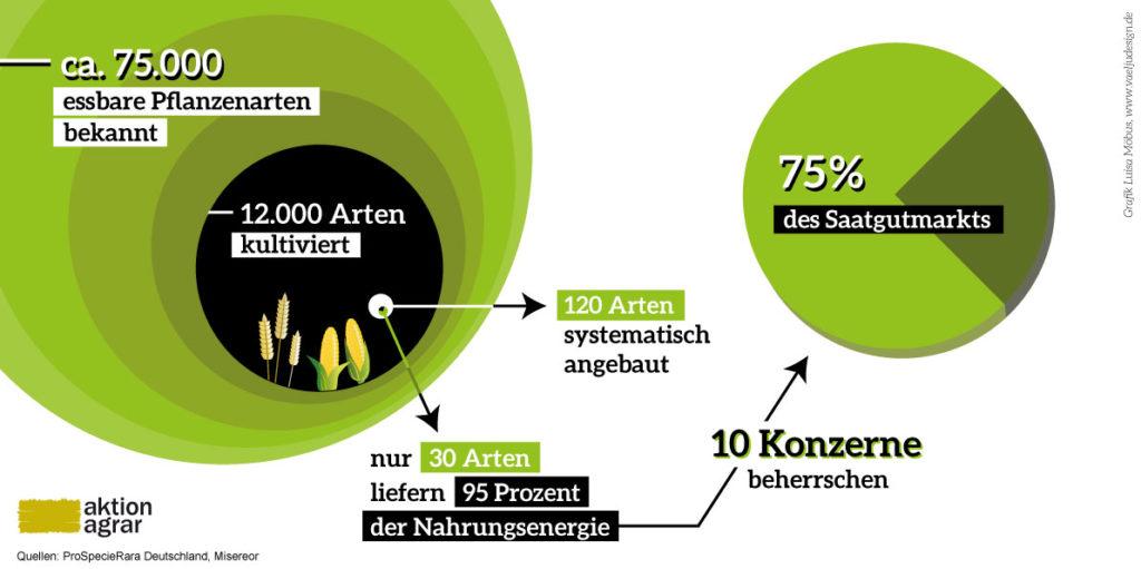 kampf_den_giganten_infografik_kulturpflanzen-vielfalt_final