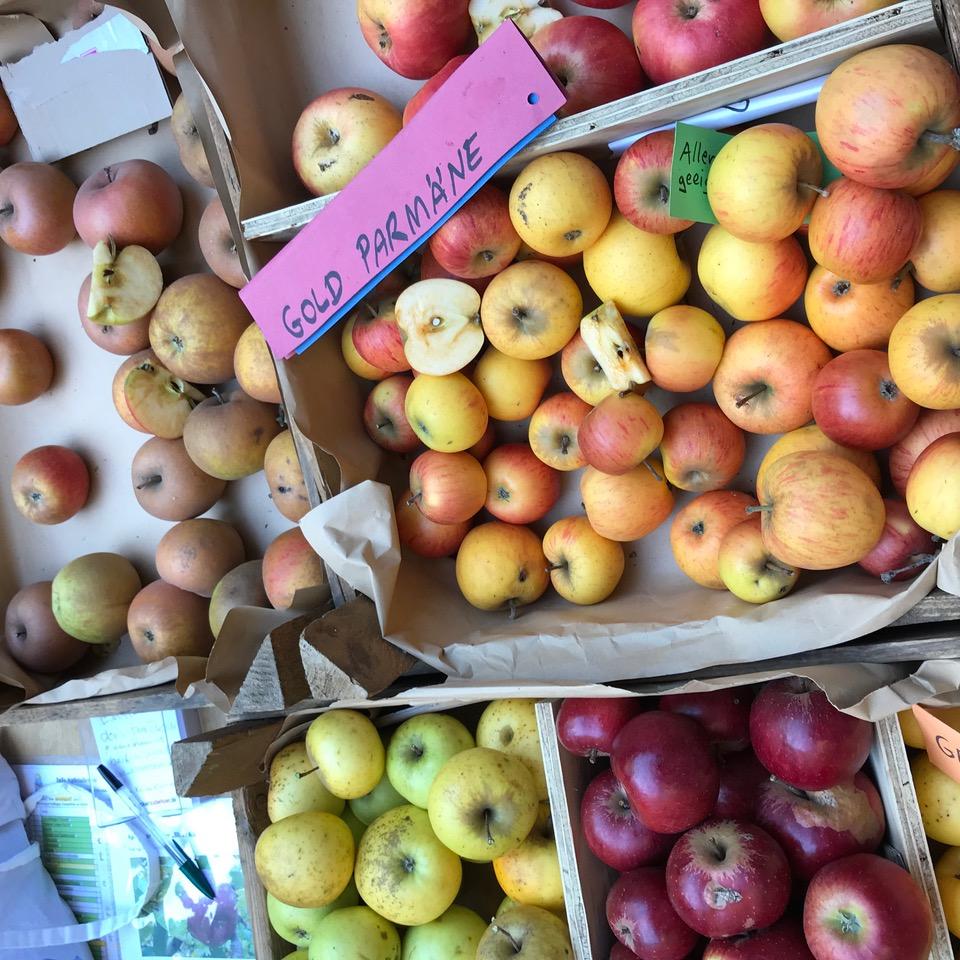 SupermarktChallenge Apfelverkauf 03