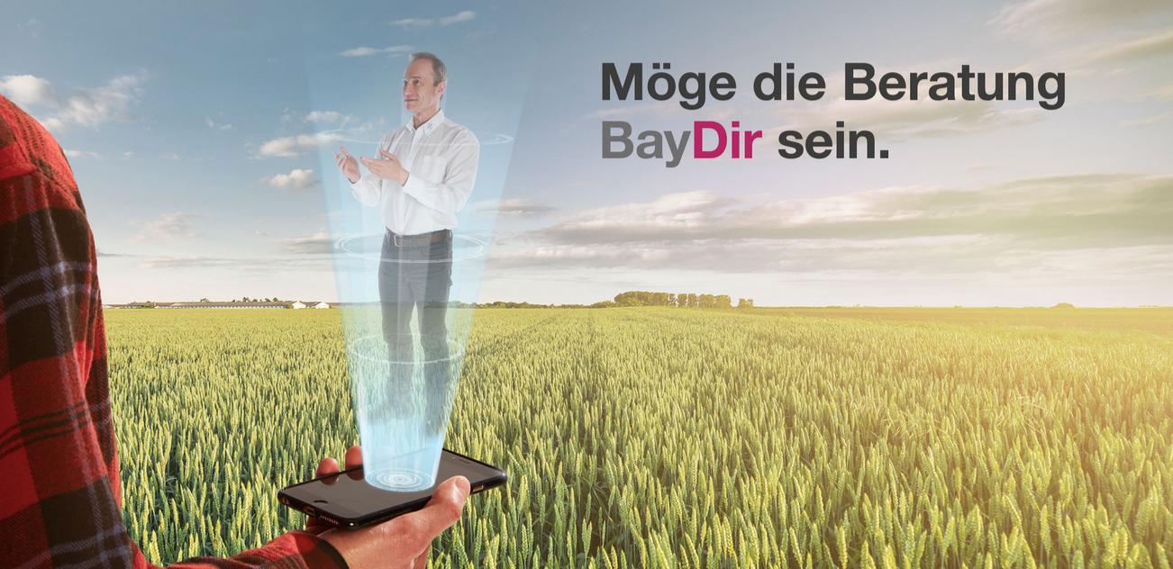 BayDir-sein2