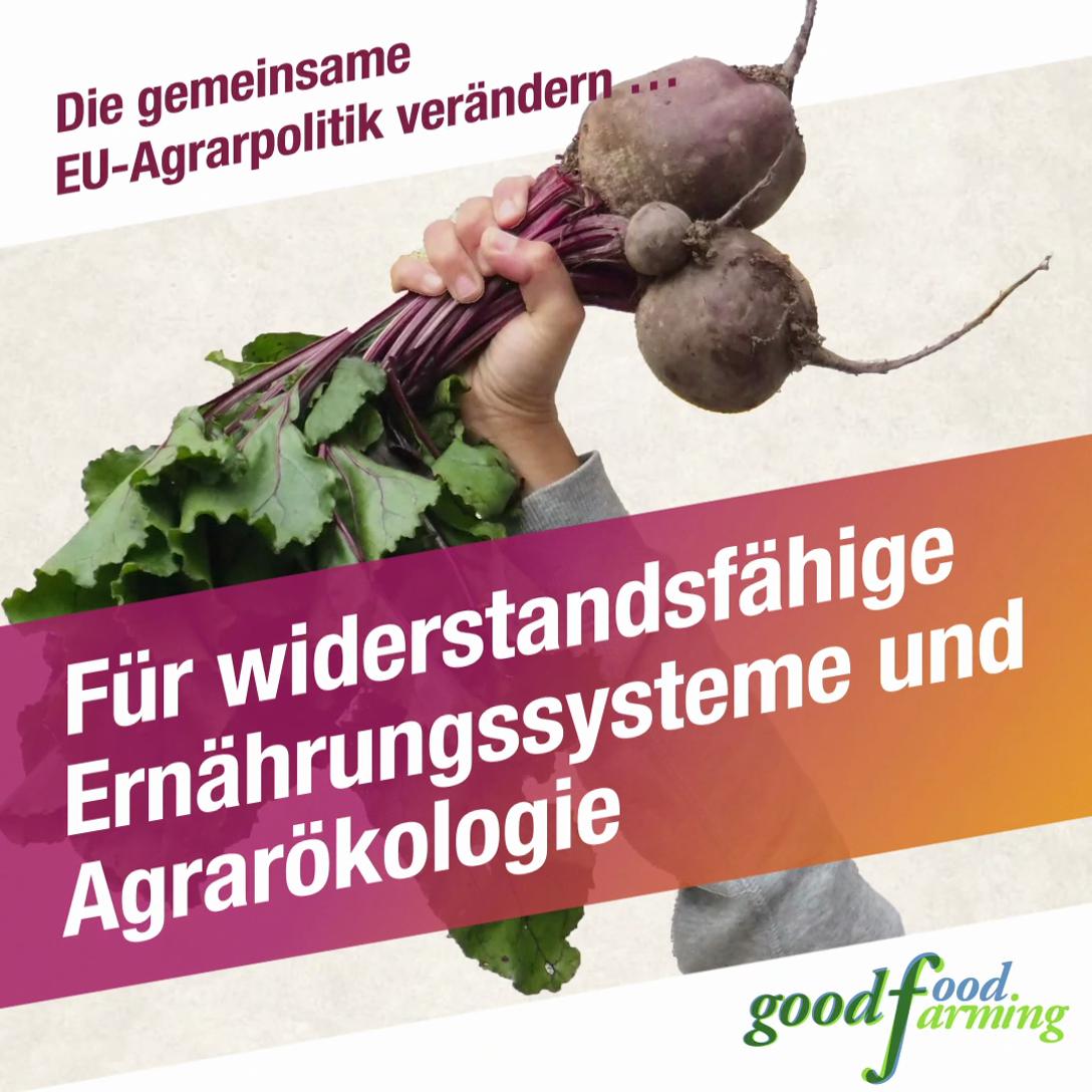 Für widerstandsfähige Ernährungssysteme und Agrarökologie