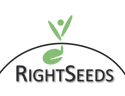 Logo_RightSeeds_frei-Kopie_invers-Kopie