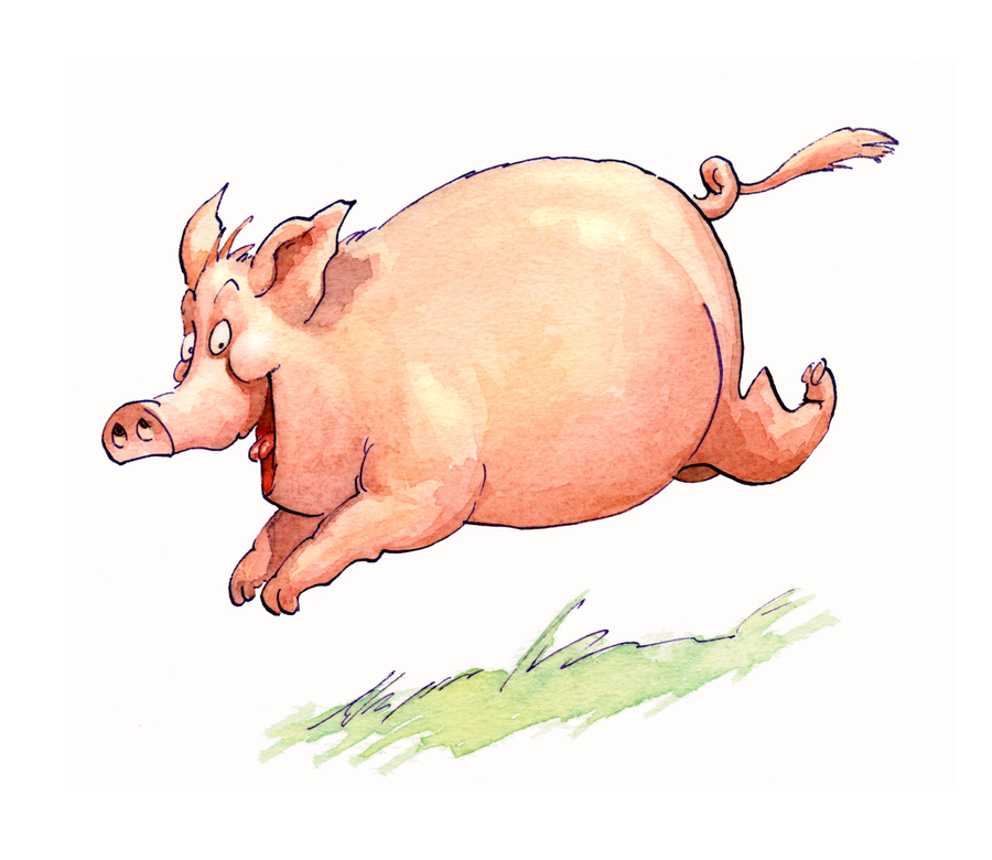 aktion-agrar-rennschwein